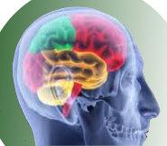 Kopf Hypnose
