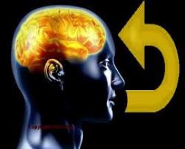 NLP Sprache Gehirn