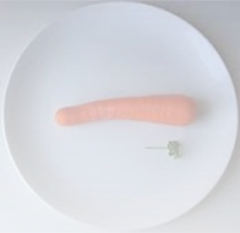 Teller mit Möhre